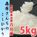 【28年産新米】濃厚な味わいの仁多米 森原さんちのコシヒカリ 5kg 【送料込み】